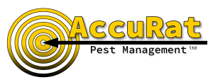 Accurat Pest Management ltd